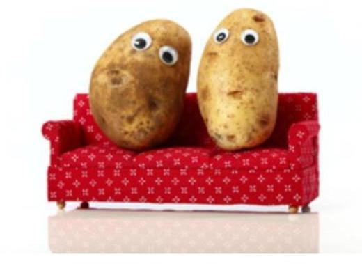 Couch Potato2